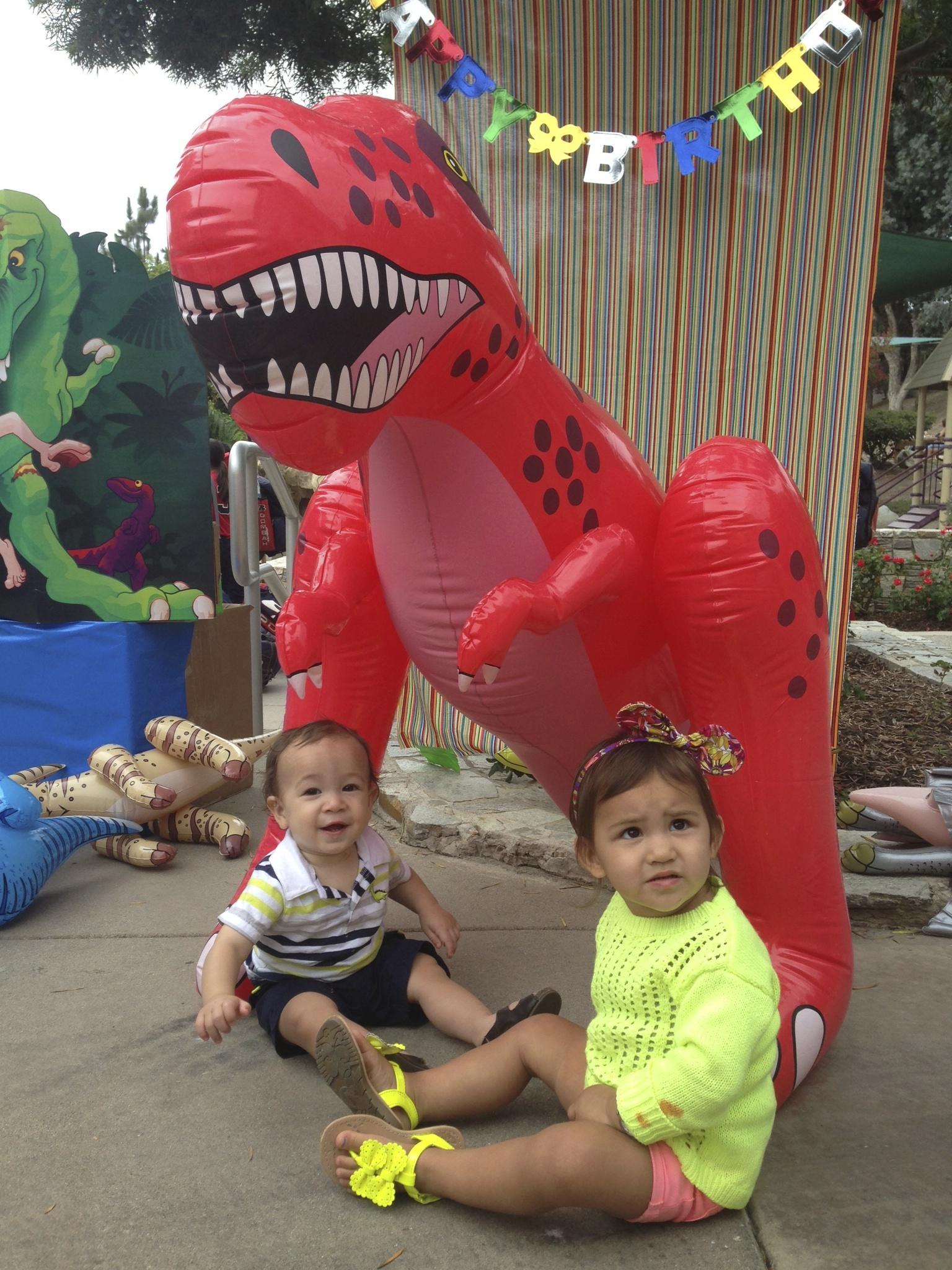 Dinosaur 1st Birthday props