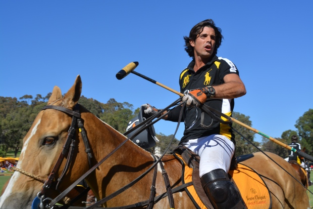 veuve_clicquot_polo_classic_nacho_on_horse