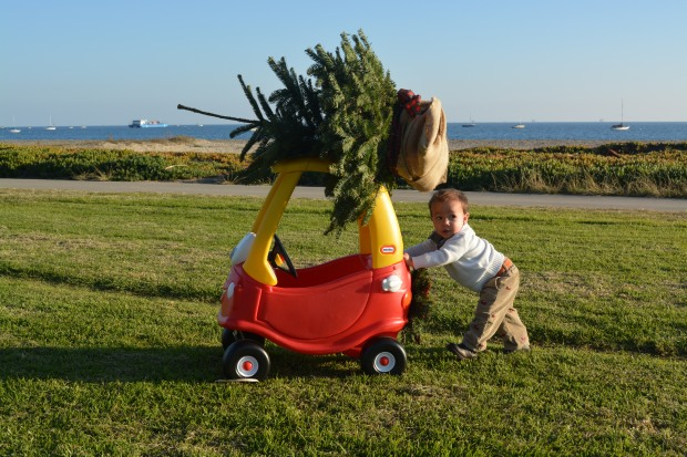 beach_christmas_tree_little tikes