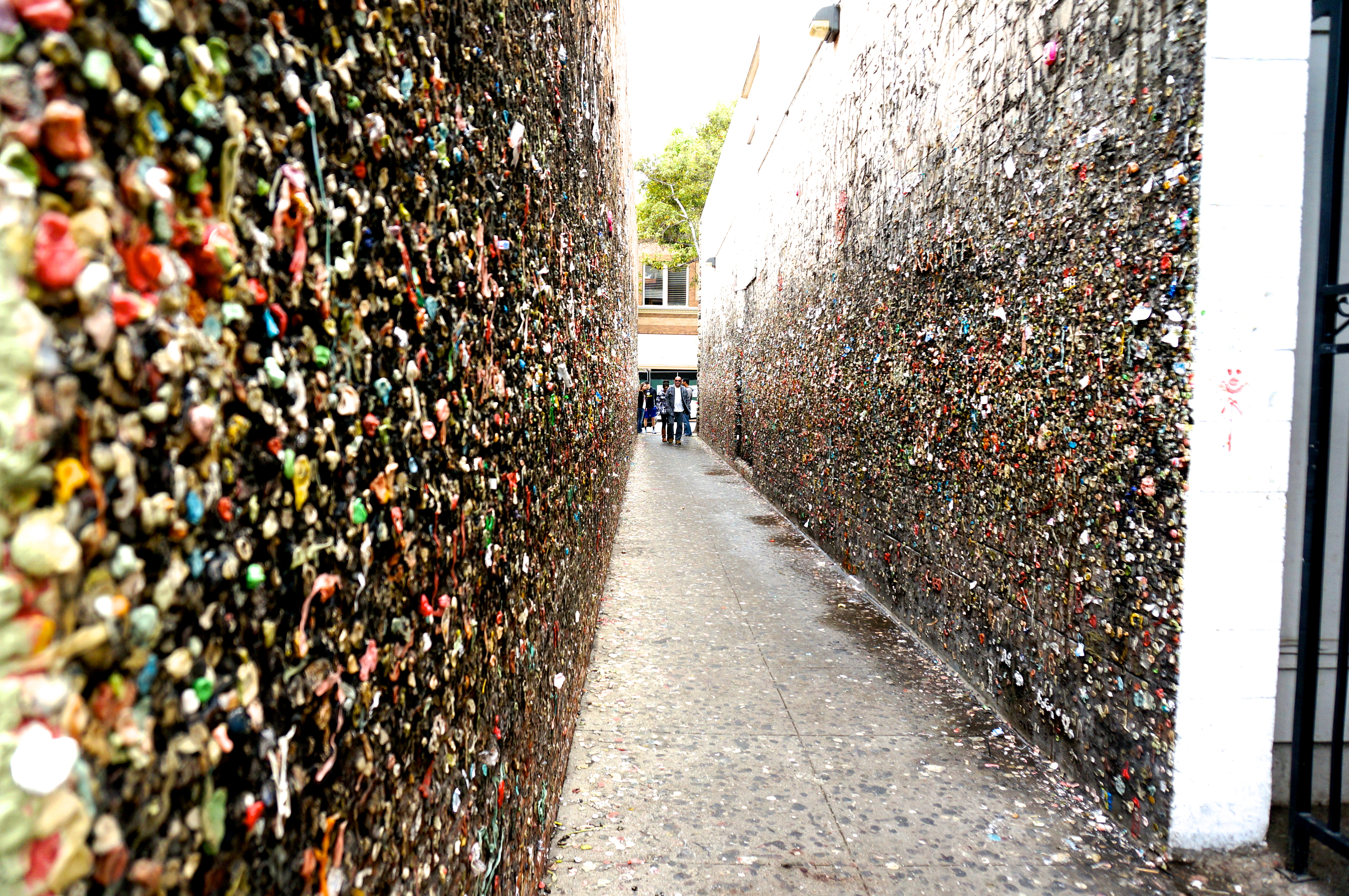 buble gum alley \ san luis obispo