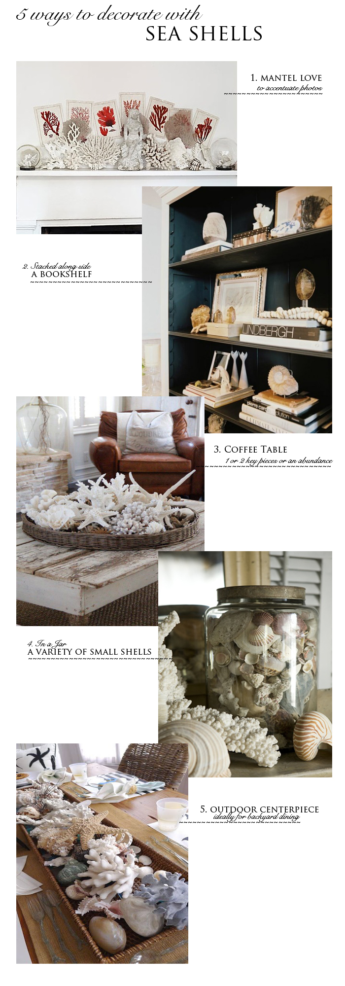 5 ways to decorate with sea shells