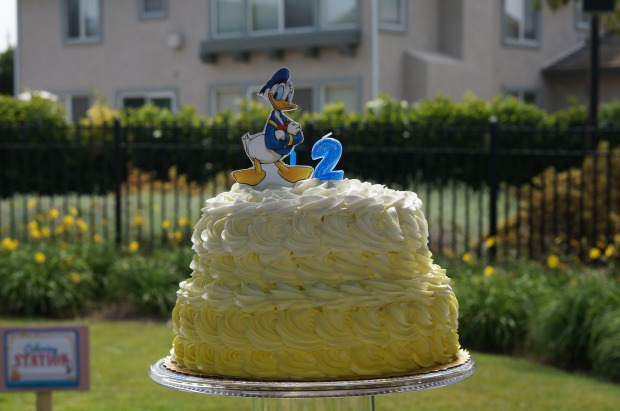 Donald Duck birthday cake // ombre birthday cake