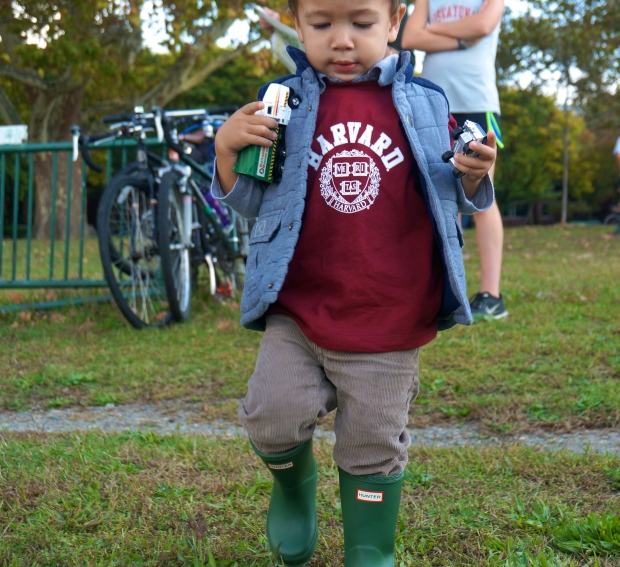 toddler Harvard shirt