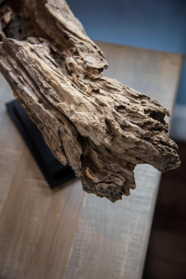 hgtv_dream_home_2015_guest-bedroom_driftwood-sculpture_v.jpg.rend.hgtvcom.1280.1920