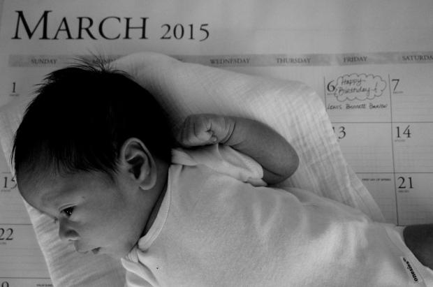newborn_calendar